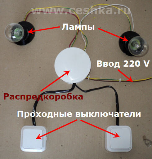 двумя группами лампочек,