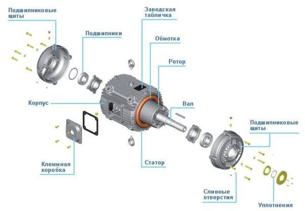 Строение электродвигателя